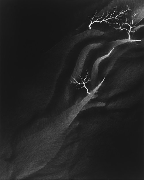 Sugimoto, Hiroshi. Lightning fields 142, 2009