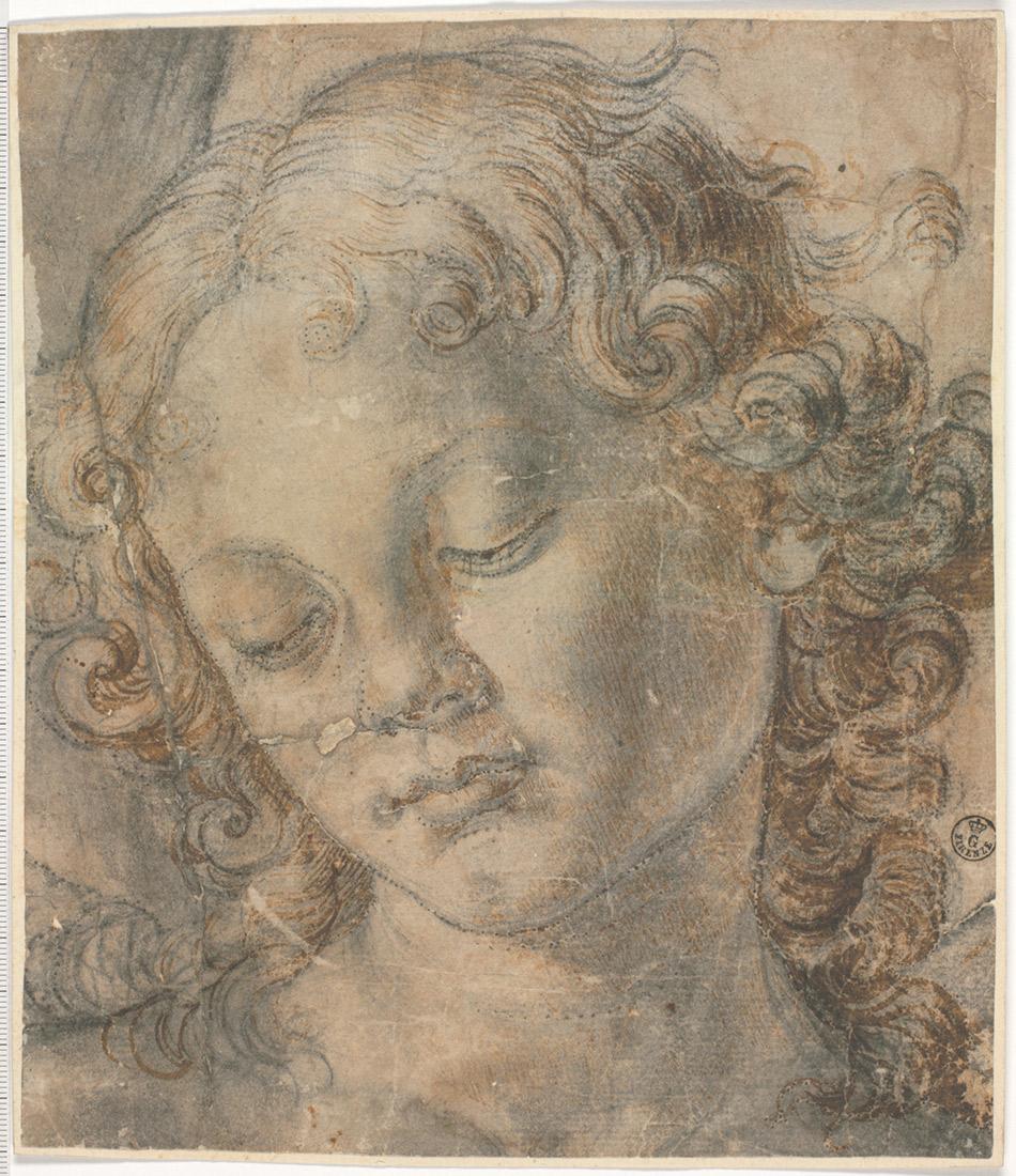 andrea-del-verrocchio_cartoon-Andrea Del Verrocchio, Cabeza de un ángel. Boceto