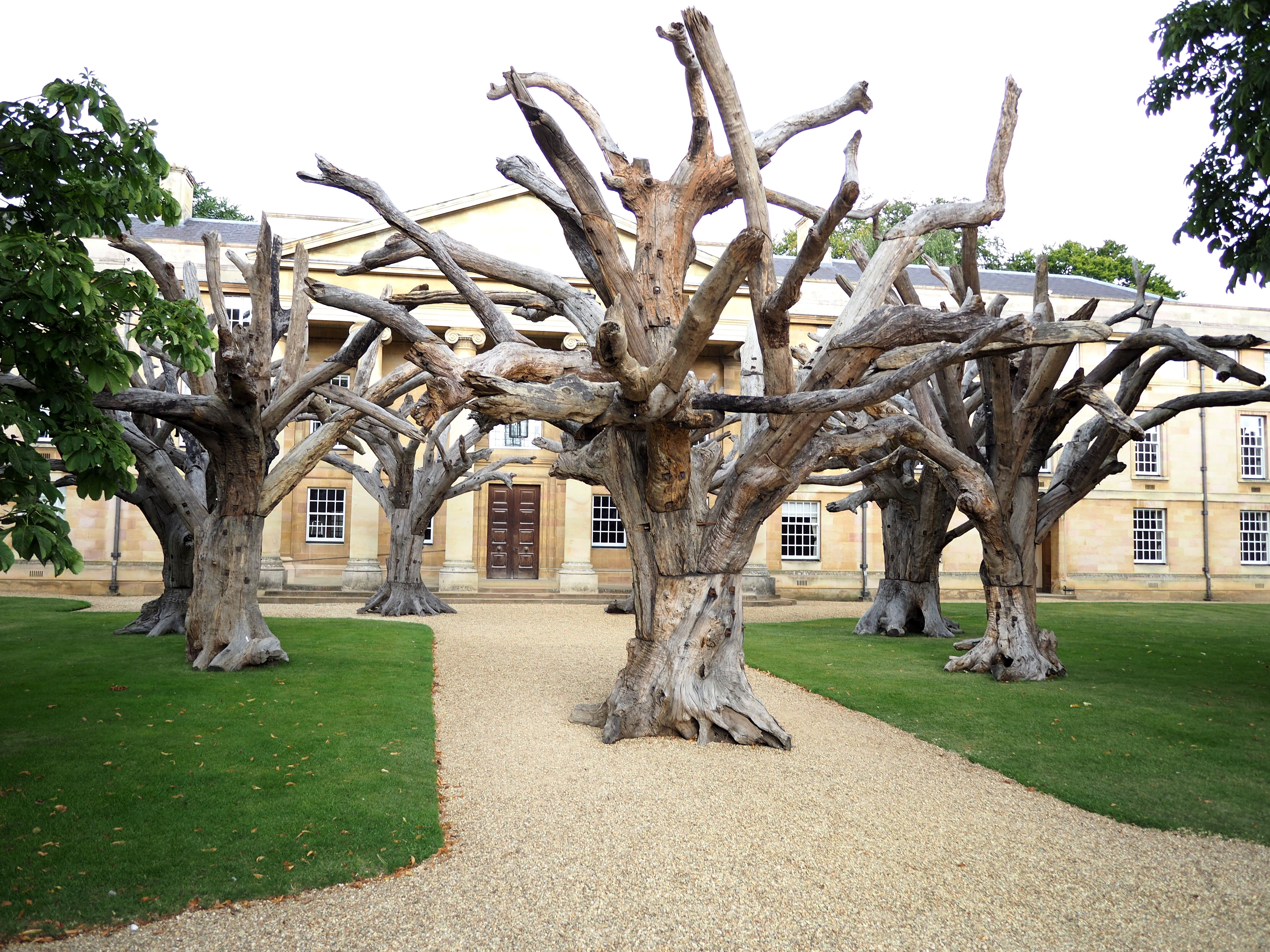 "Ai Weiwei. ""Trees"". 2010. Installed in Downing College, Cambridge, 2016. Wikimedia commons"
