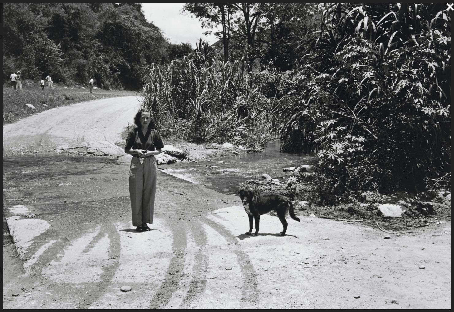 Alfredo Cortina. S/t 1960. ©Archivo Fotografía Urbana. Colección del MoMA.