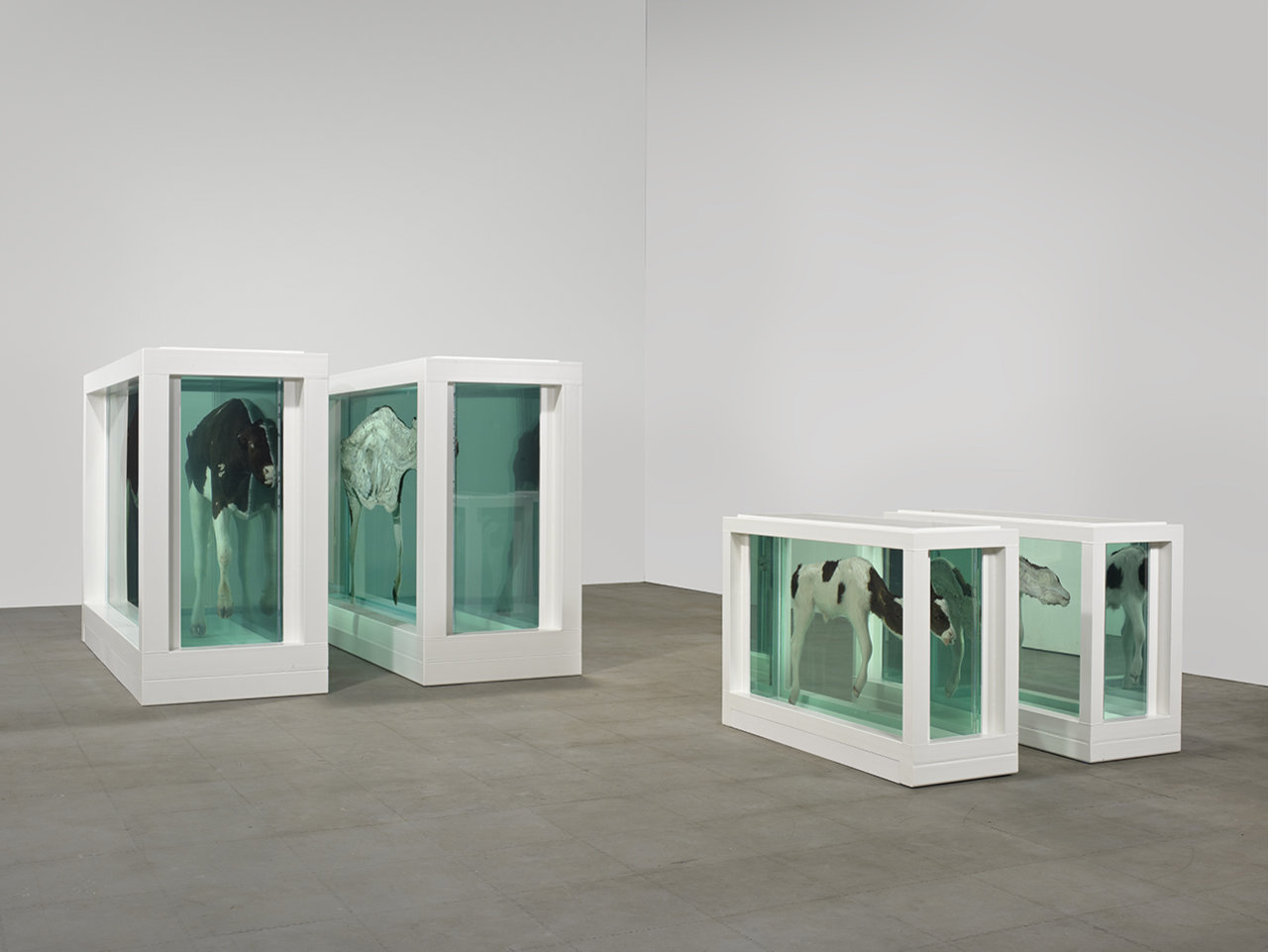 Damien Hirst Mother and Child (Divided), Turner prize 1995