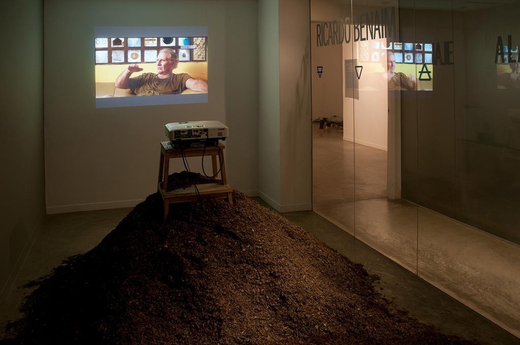 Entrevista a Ricardo Benaim. Galería GBG Arts.